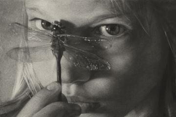 027 Dragonfly Eyes